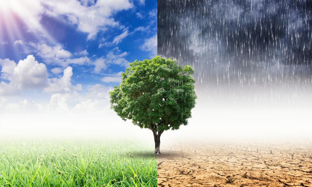 климатические пояса спецодежда спб